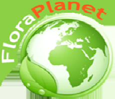 FLORAPLANET catalogue of garden companies internet websites
